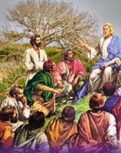 Bài Giảng Chúa Nhật III Mùa Chay Năm C – Lm Jos Tạ Duy Tuyền