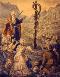 Bài Giảng Chúa Nhật IV Mùa Chay Năm B - Lm Phê-rô Lê Văn Chính
