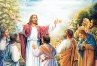 Lời Chúa thứ tư tuần XV thường niên (17/07/2019)