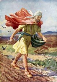 Lời Chúa thứ sáu tuần XVI thường niên (23/07/2021)
