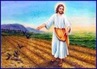 Lời Chúa thứ bảy tuần XXIV thường niên (18/09/2021)