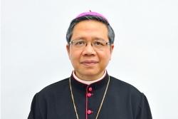Bổ nhiệm Giám quản Tông tòa Tổng giáo phận Tp. Hồ Chí Minh