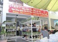 Lễ Hội Bánh Chưng Xuân Ất Mùi 2015 Gx Tân Thái Sơn – Bản Tin Số 04